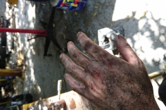 Dirty Mechanic Hands