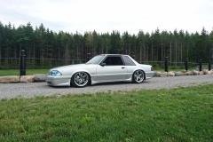 Dech.Mustang.20