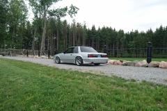 Dech.Mustang.21