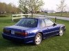 1988 Mustang Coupe Rear